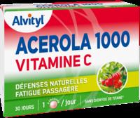 Govital Acerola 1000 à LEVIGNAC
