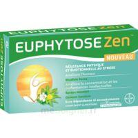 Euphytosezen Comprimés B/30 à LEVIGNAC