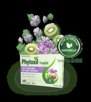 Phytoxil Transit Comprimés B/20 à LEVIGNAC