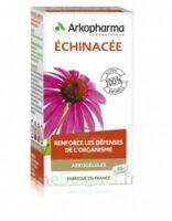 Arkogélules Echinacée Gélules B/45 à LEVIGNAC