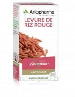 Arkogélules Levure De Riz Rouge Gélules Fl/45 à LEVIGNAC