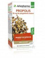 Arkogélules Propolis Bio Gélules Fl/45 à LEVIGNAC