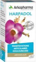 Arkogelules Harpagophyton Gélules Fl/150 à LEVIGNAC