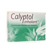 Calyptol Inhalant, émulsion Pour Inhalation Par Fumigation à LEVIGNAC