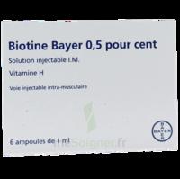 Biotine Bayer 0,5 Pour Cent, Solution Injectable I.m. à LEVIGNAC