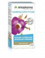 Arkogelules Harpagophyton Gélules Fl/45 à LEVIGNAC