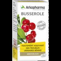 Arkogelules Busserole Gélules Fl/45 à LEVIGNAC