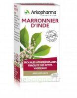 Arkogelules Marronnier D'inde Gélules Fl/45 à LEVIGNAC