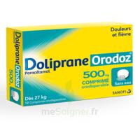 Dolipraneorodoz 500 Mg, Comprimé Orodispersible à LEVIGNAC