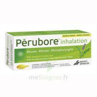 Perubore Caps Inhalation Par Vapeur Inhalation Plq/15 à LEVIGNAC