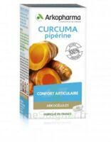 Arkogelules Curcuma Pipérine Gélules Fl/45 à LEVIGNAC