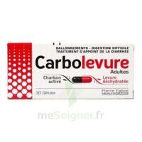 Carbolevure Gélules Adulte Plq/30 à LEVIGNAC