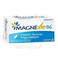 Magnevie B6 100 Mg/10 Mg Comprimés Pelliculés Plaq/60 à LEVIGNAC