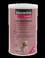 Biocanina Lait Poudre Maternisé B/400g à LEVIGNAC