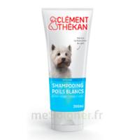 Clément Thékan Shampooing Poils Blancs T/200ml à LEVIGNAC