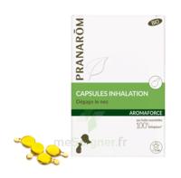 Aromaforce Caps Inhalation Bio B/15 à LEVIGNAC