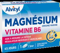 Govital Magnésium Vitamine B6 Comprimés B/45 à LEVIGNAC