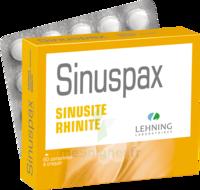 Lehning Sinuspax Comprimés à Croquer 3plq/20 à LEVIGNAC