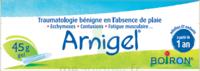 Boiron Arnigel Gel T/45g à LEVIGNAC