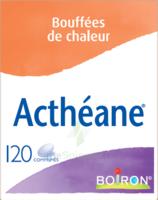 Boiron Acthéane Comprimés B/120 à LEVIGNAC